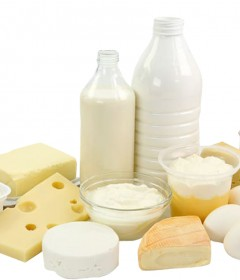 Dairy products stores