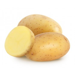 Bab Rizk _ POTATO