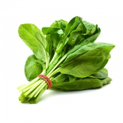 Raya Farms _ SPINACH PLATE