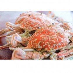 EL Menshawy Fishes  _   Fish  Fresh Crabs   Uncooked