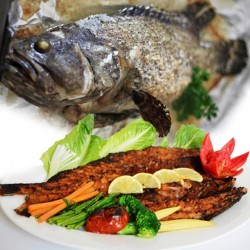 Alrahma Fish  _  ( Golden Groupers )  - Fried - grilled - tray - Sinjari