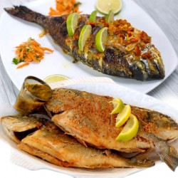 Alrahma Fish  _  ( sea bream )  - Fried - grilled - grilled butter - oil and lemon